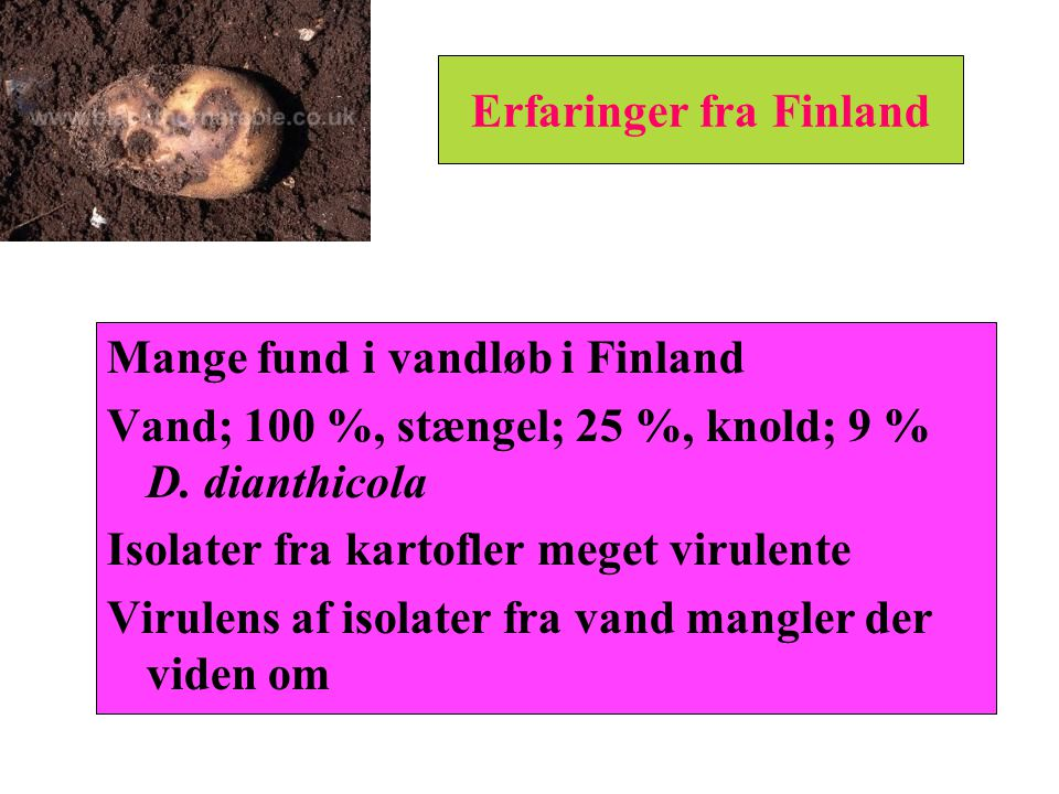 Erfaringer fra Finland