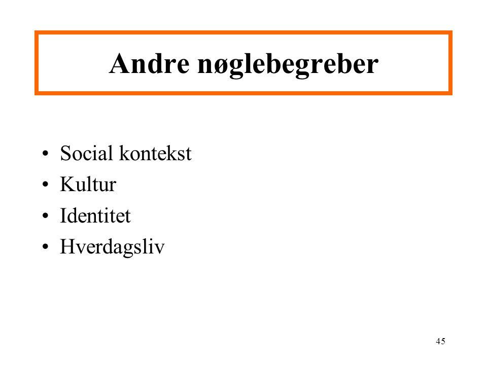 Andre nøglebegreber Social kontekst Kultur Identitet Hverdagsliv