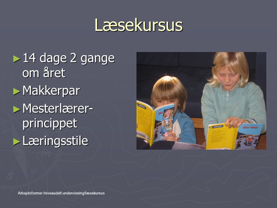 Læsekursus 14 dage 2 gange om året Makkerpar Mesterlærer-princippet