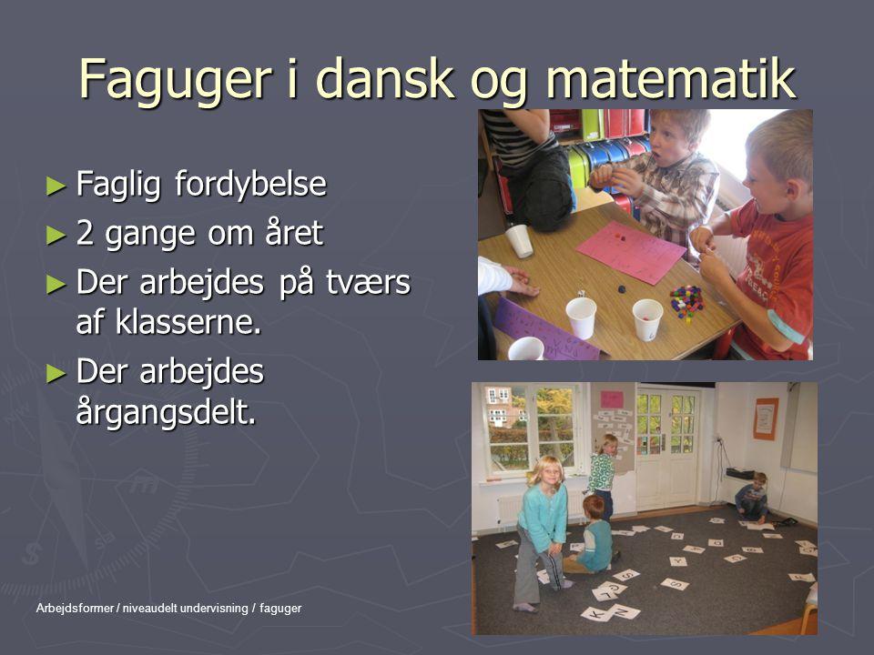 Faguger i dansk og matematik