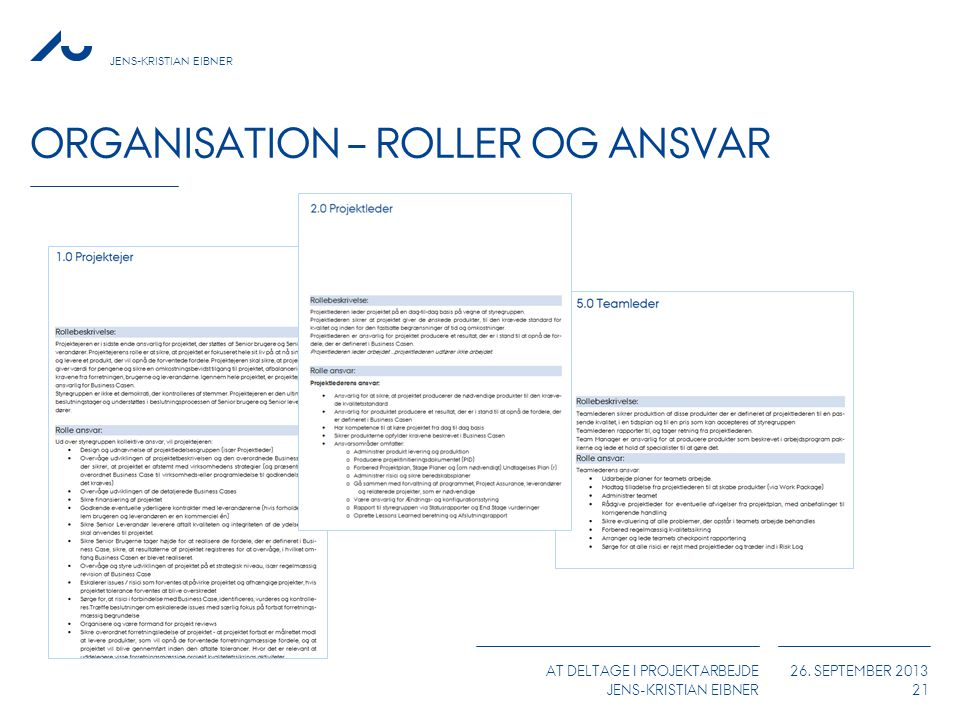 Organisation – Roller og Ansvar