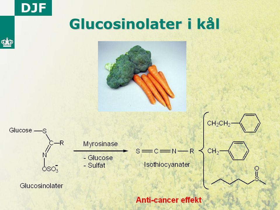 Glucosinolater i kål