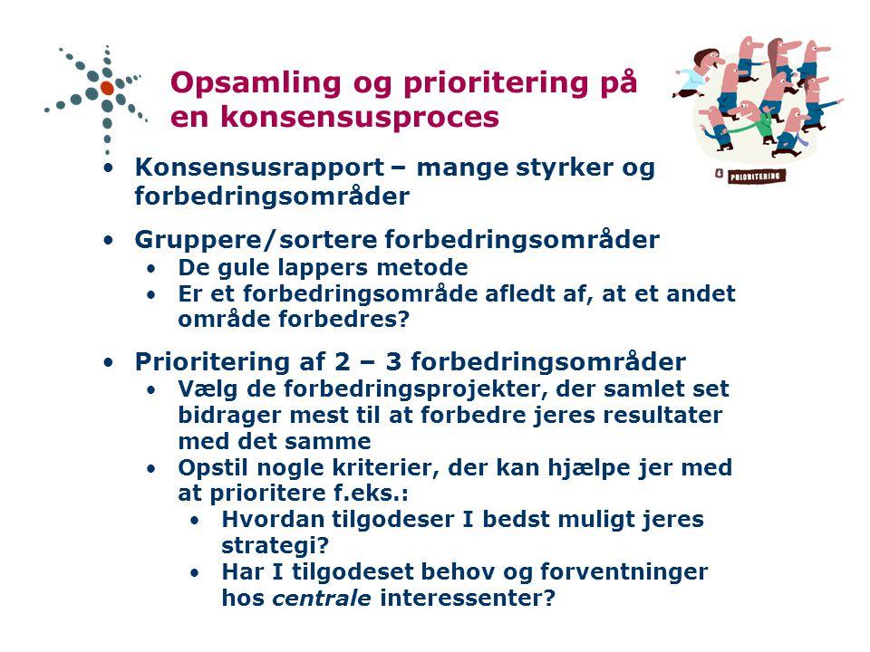 Opsamling og prioritering på en konsensusproces