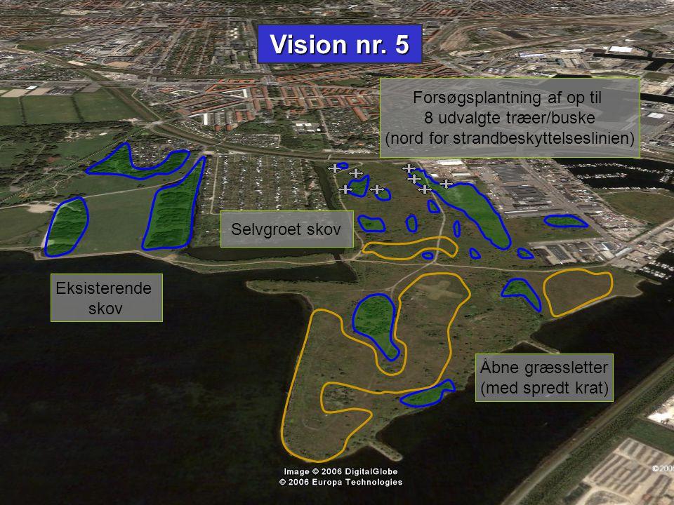 Vision nr. 5 Forsøgsplantning af op til 8 udvalgte træer/buske