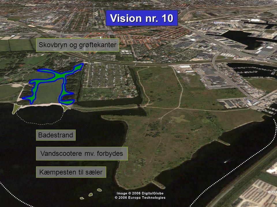 Vision nr. 10 Skovbryn og grøftekanter Badestrand
