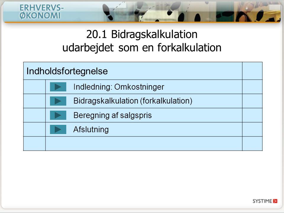 20.1 Bidragskalkulation udarbejdet som en forkalkulation