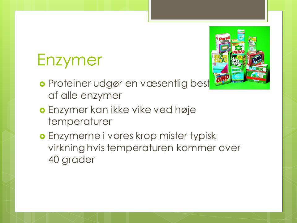Enzymer Proteiner udgør en væsentlig bestandel af alle enzymer