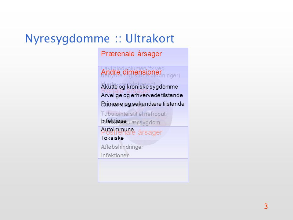 Nyresygdomme :: Ultrakort