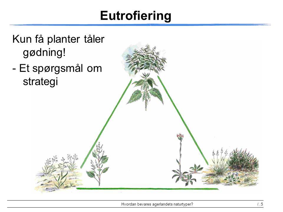 Eutrofiering Kun få planter tåler gødning! - Et spørgsmål om strategi