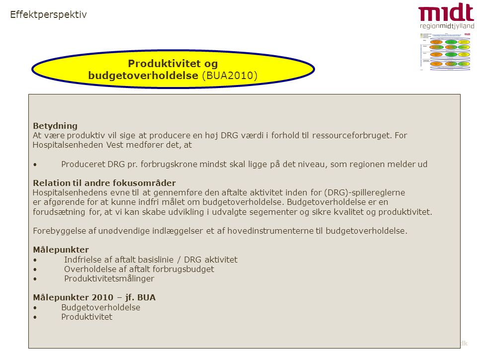 Produktivitet og budgetoverholdelse (BUA2010)