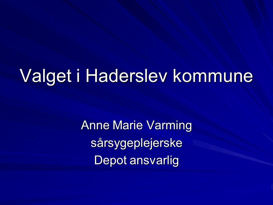 Valget i Haderslev kommune