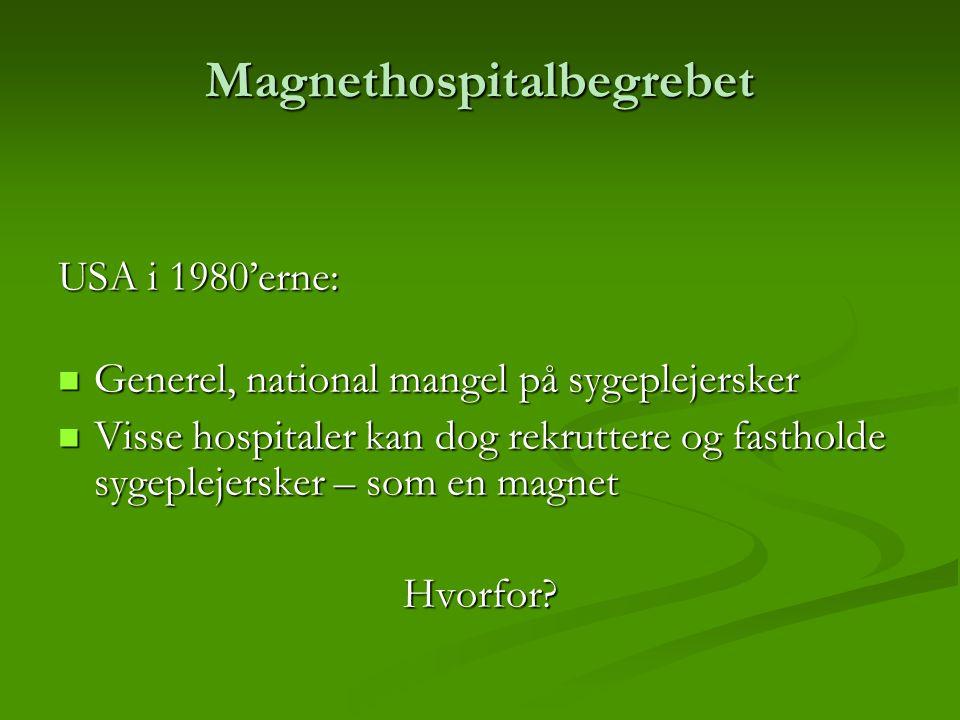 Magnethospitalbegrebet