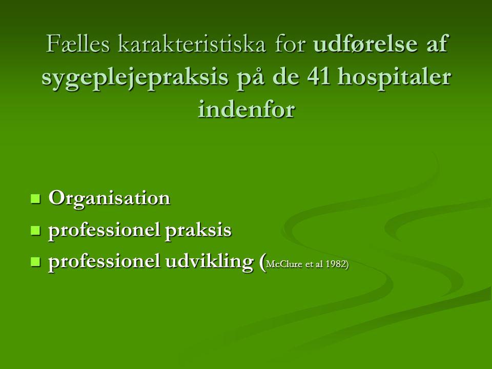 Fælles karakteristiska for udførelse af sygeplejepraksis på de 41 hospitaler indenfor