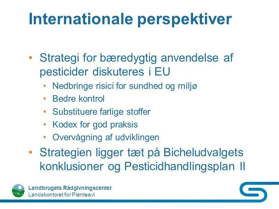 Internationale perspektiver