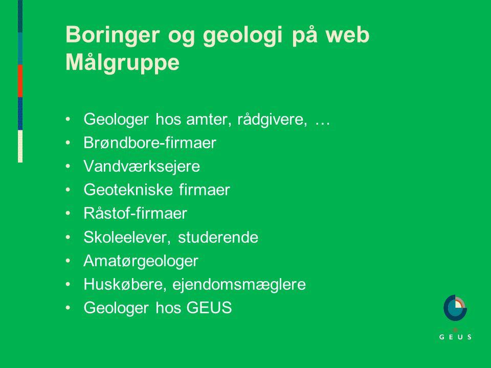 Boringer og geologi på web Målgruppe