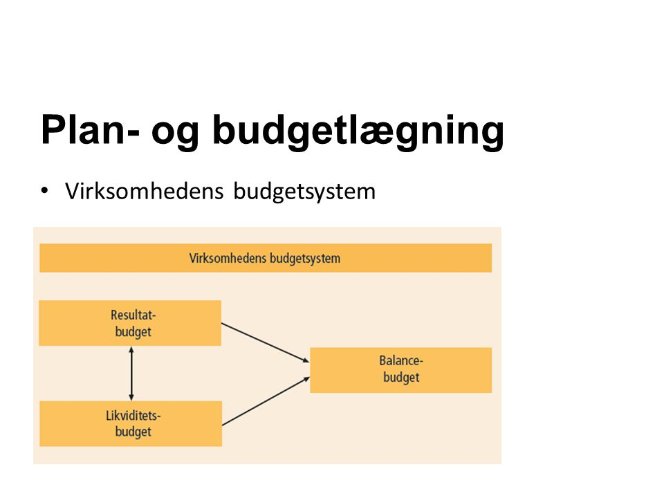 Plan- og budgetlægning