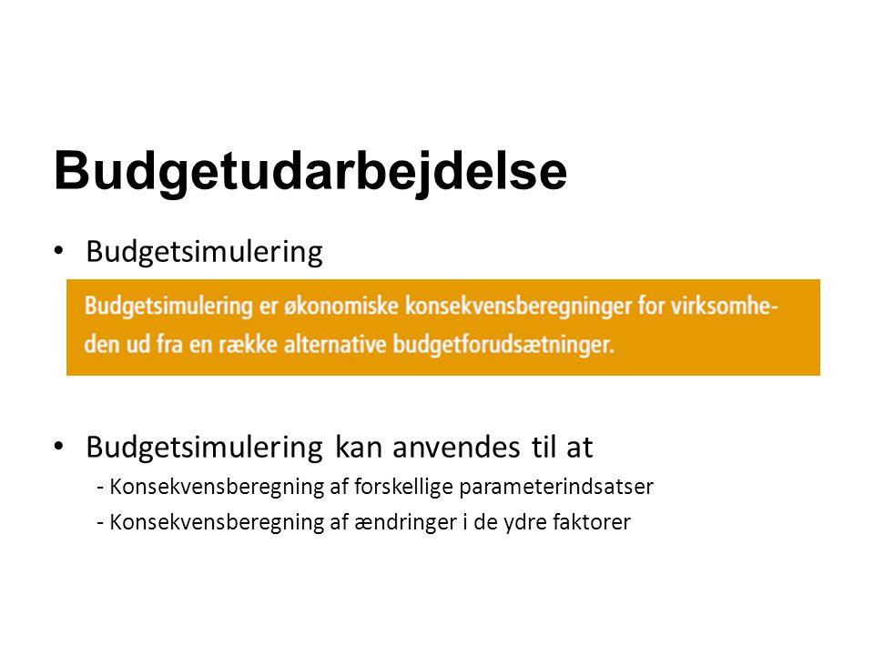 Budgetudarbejdelse Budgetsimulering