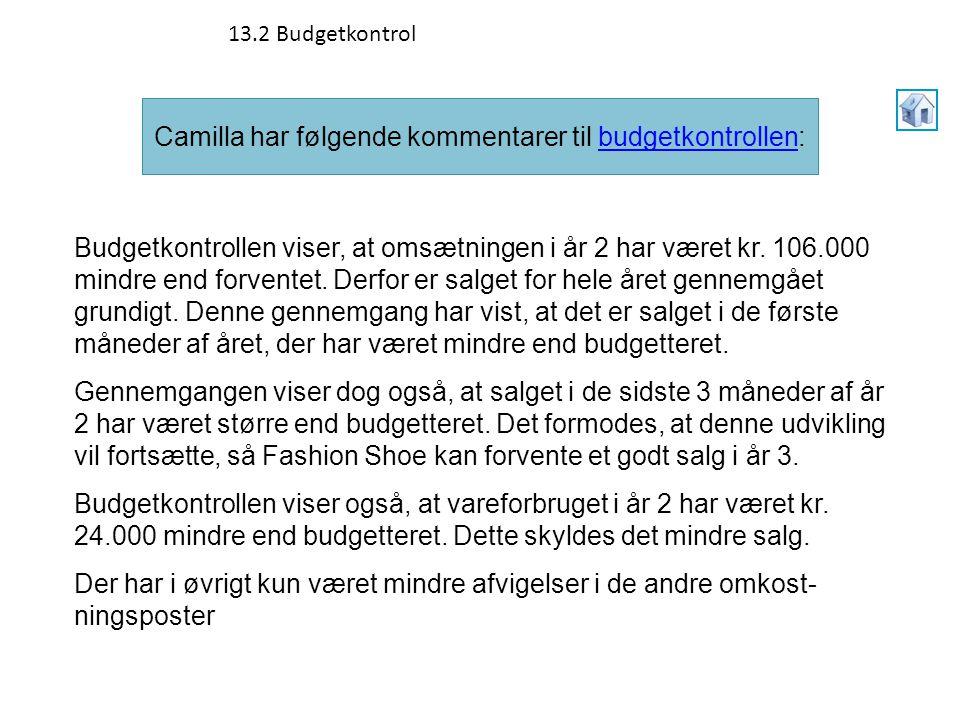 Camilla har følgende kommentarer til budgetkontrollen: