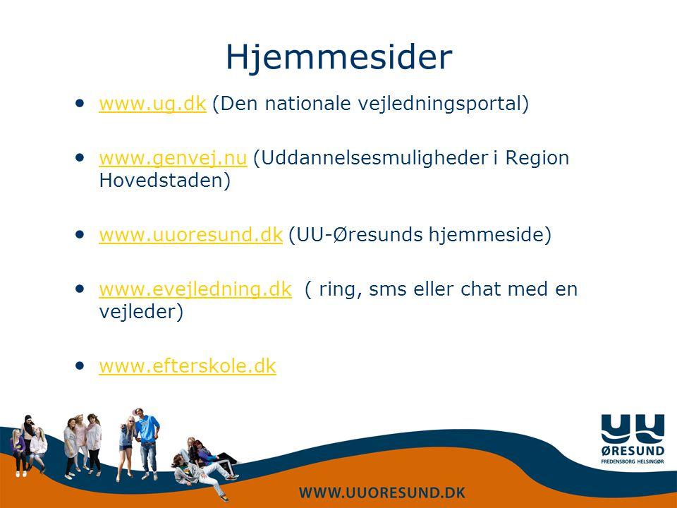 Hjemmesider www.ug.dk (Den nationale vejledningsportal)