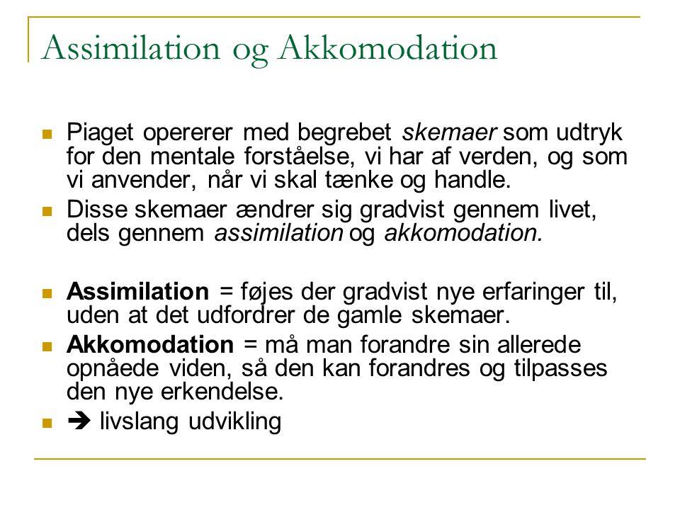 Assimilation og Akkomodation