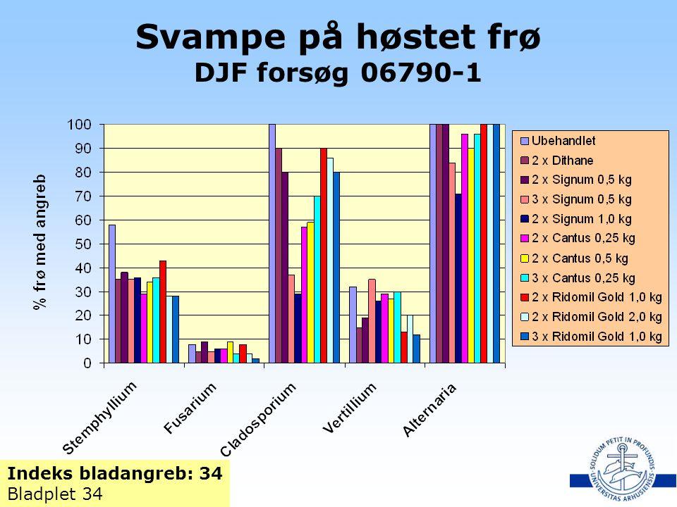 Svampe på høstet frø DJF forsøg 06790-1