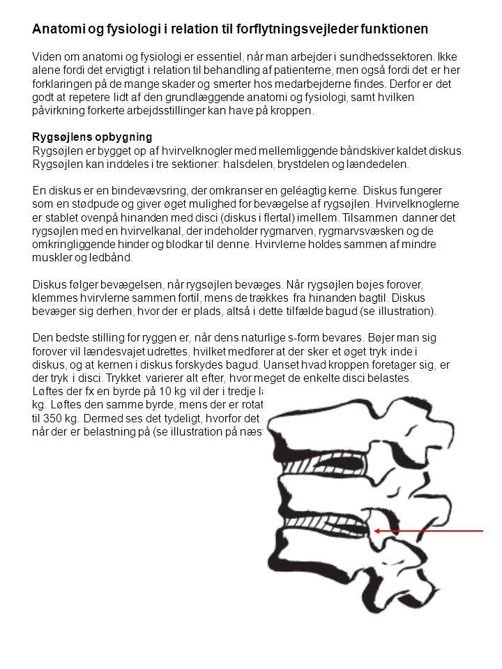 Anatomi og fysiologi i relation til forflytningsvejleder funktionen