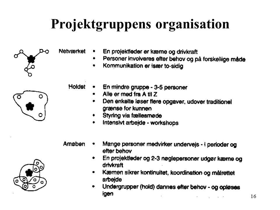 Projektgruppens organisation