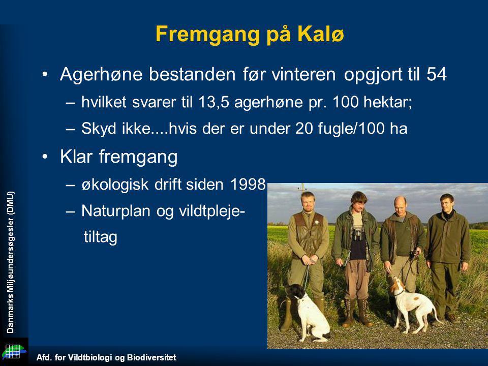 Fremgang på Kalø Agerhøne bestanden før vinteren opgjort til 54