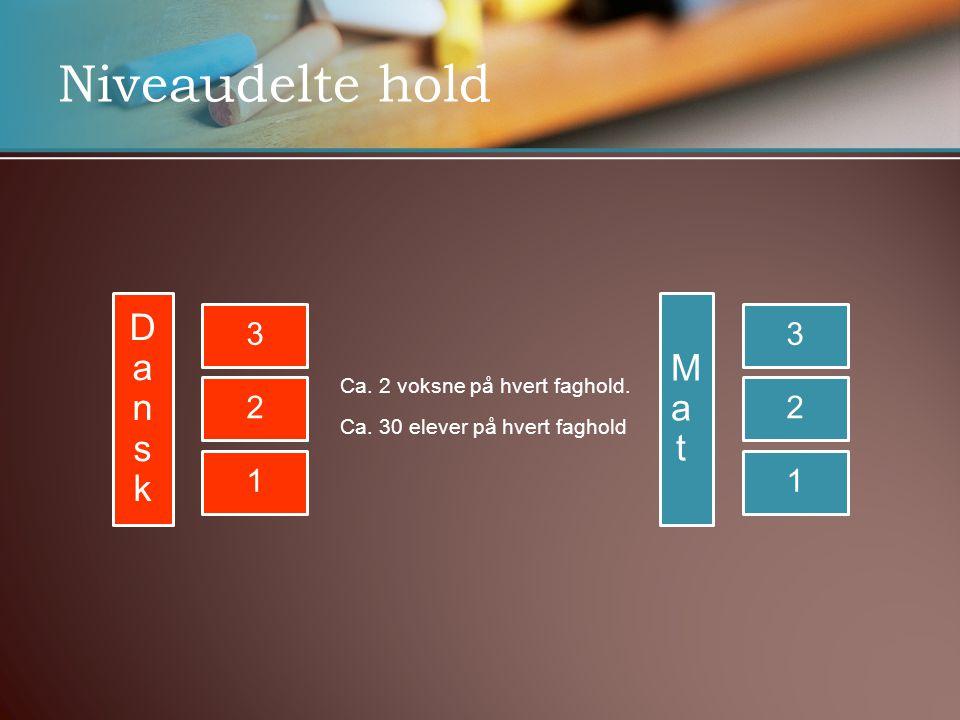 Niveaudelte hold Dansk Mat 3 2 1 3 2 1 Ca. 2 voksne på hvert faghold.
