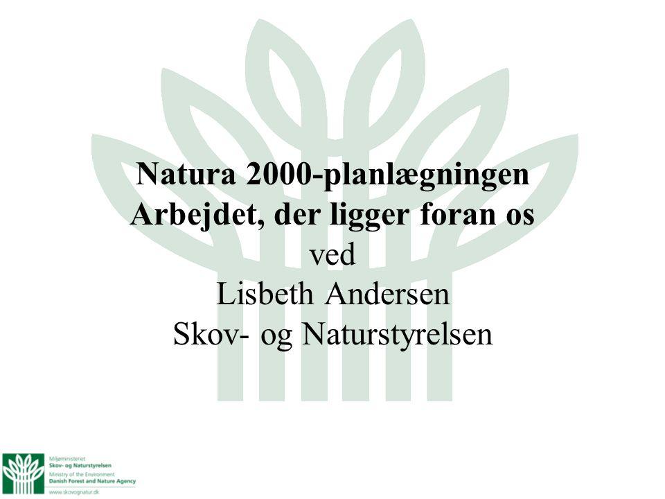 Natura 2000-planlægningen Arbejdet, der ligger foran os ved Lisbeth Andersen Skov- og Naturstyrelsen