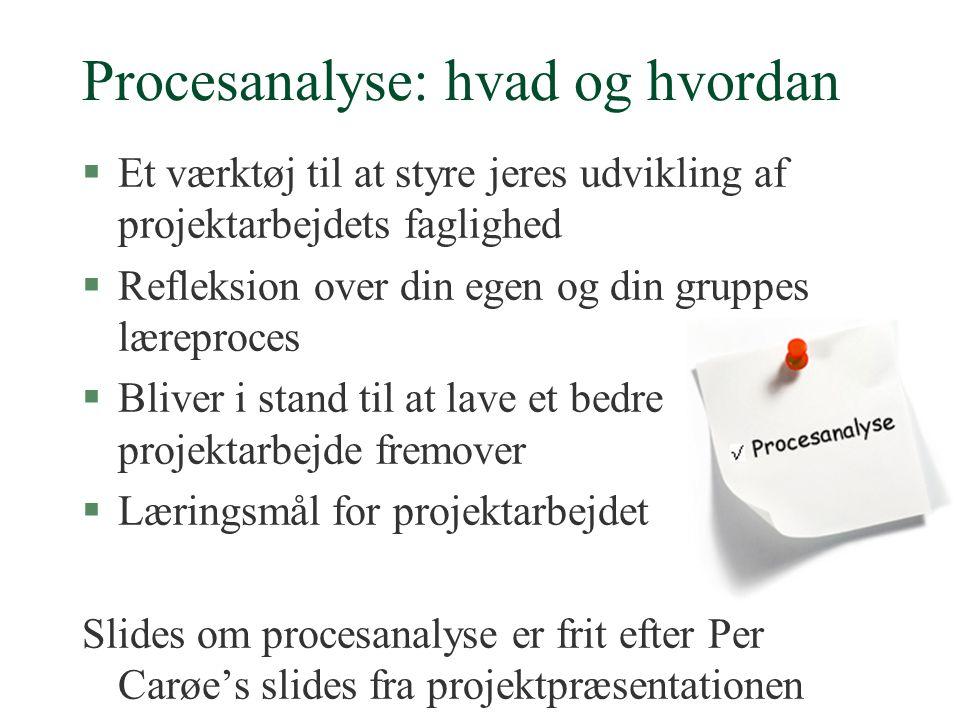 Procesanalyse: hvad og hvordan