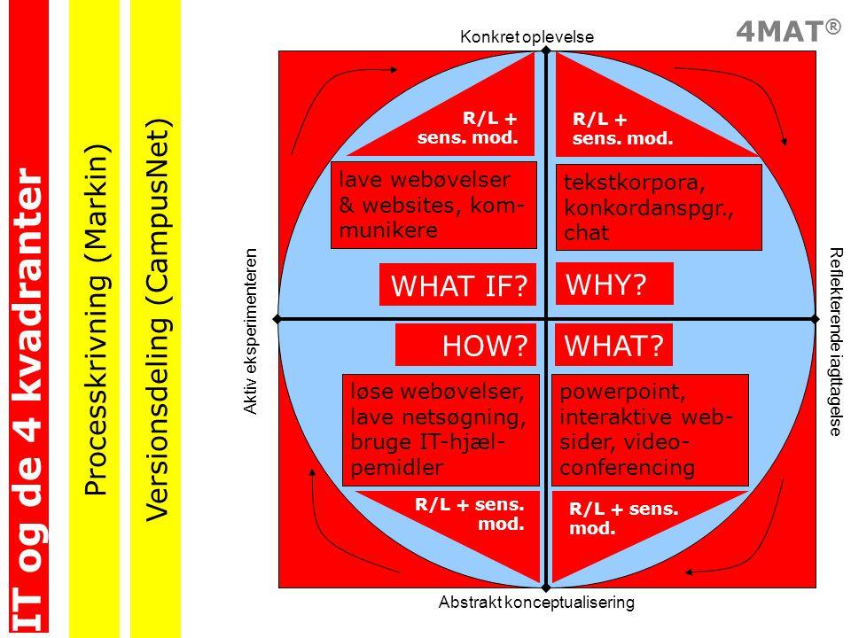 IT og de 4 kvadranter Processkrivning (Markin)