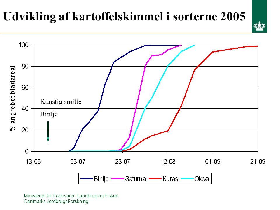 Udvikling af kartoffelskimmel i sorterne 2005