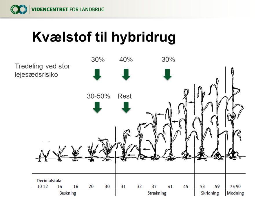 Kvælstof til hybridrug