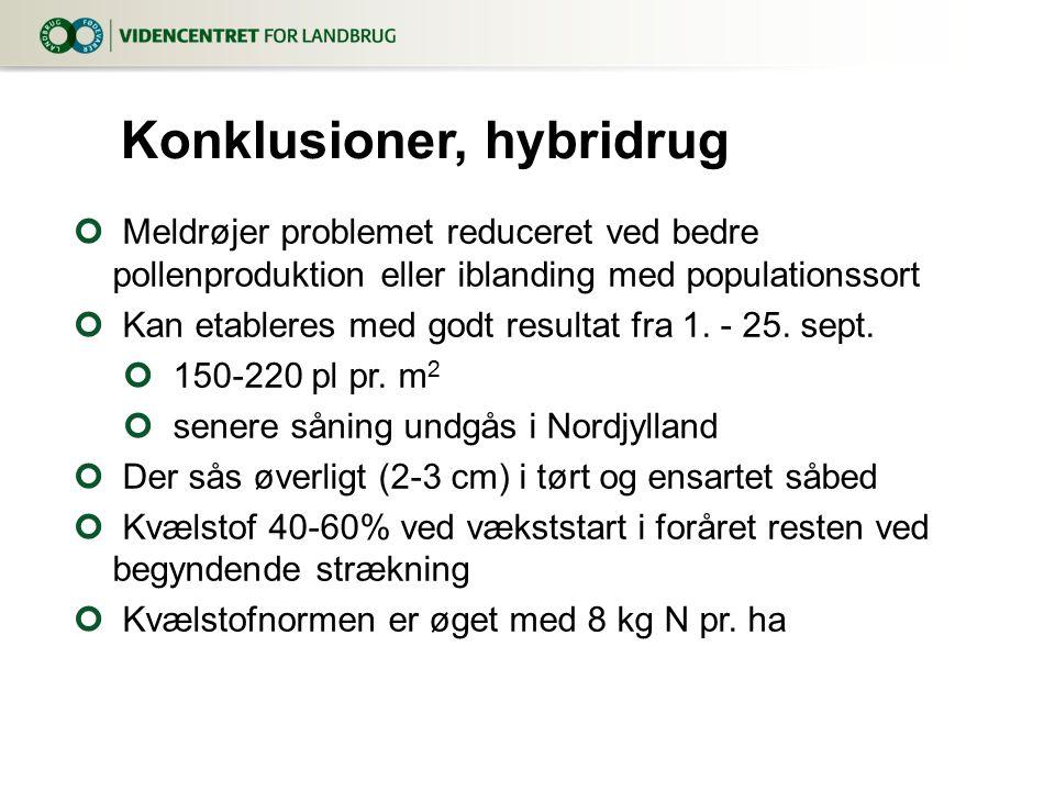 Konklusioner, hybridrug