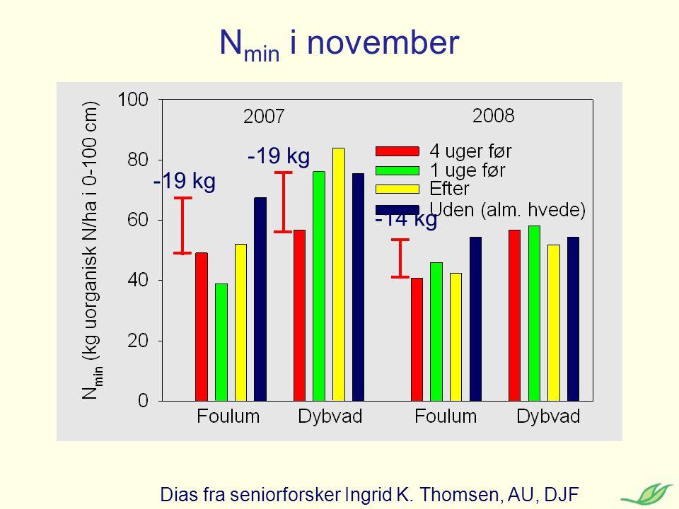 Nmin i november -19 kg -19 kg -14 kg