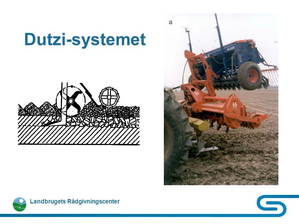 Dutzi-systemet