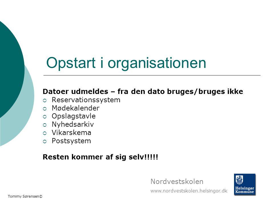 Opstart i organisationen