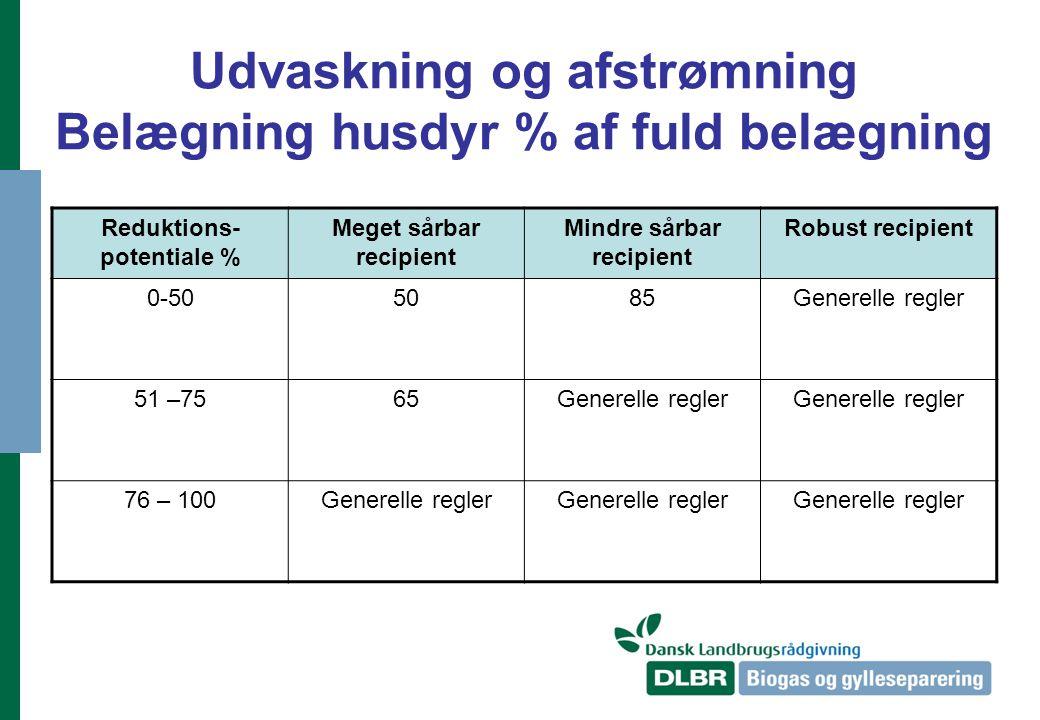 Udvaskning og afstrømning Belægning husdyr % af fuld belægning