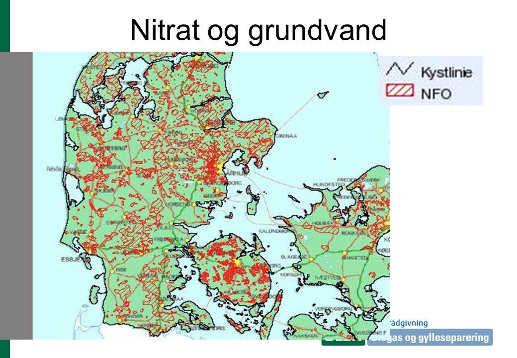 Nitrat og grundvand I NFO: Nitratfølsome indvindsområder kan der blive krav om tiltag der kan reducere udvaskningen af kvælstof: