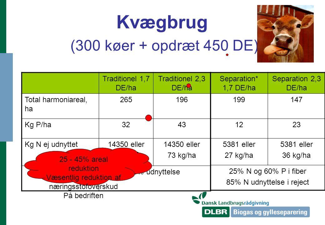 Kvægbrug (300 køer + opdræt 450 DE)