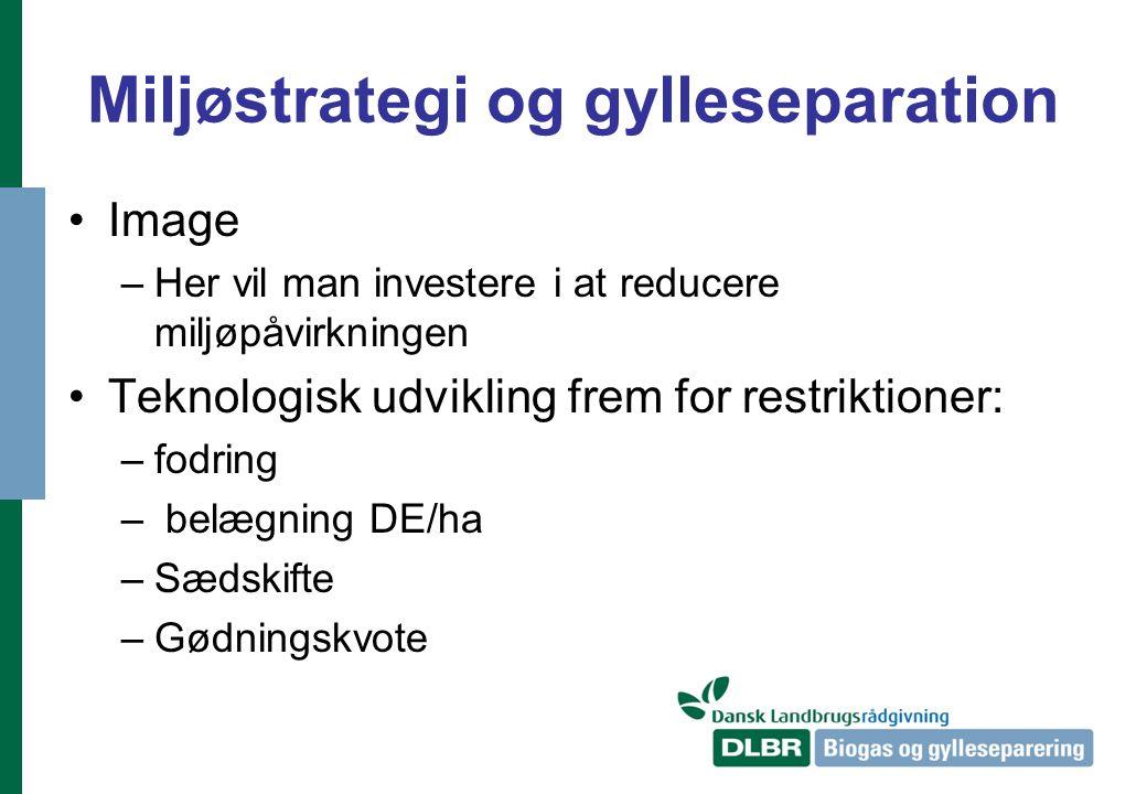 Miljøstrategi og gylleseparation