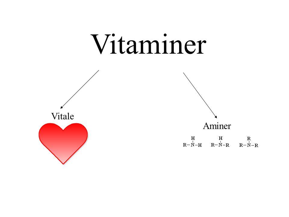 Vitaminer Vitale Aminer