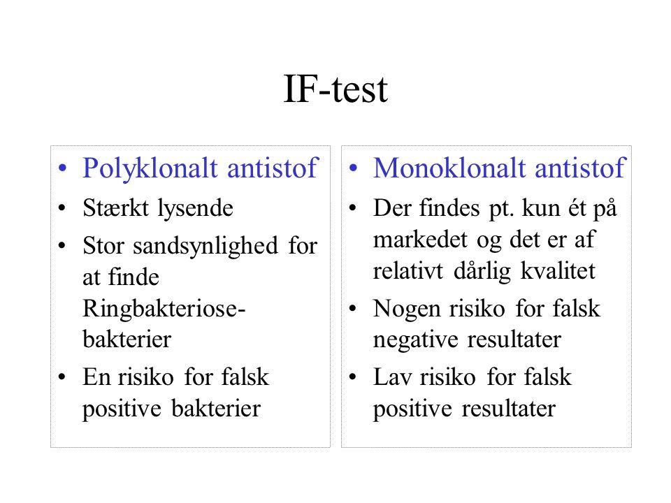 IF-test Polyklonalt antistof Monoklonalt antistof Stærkt lysende