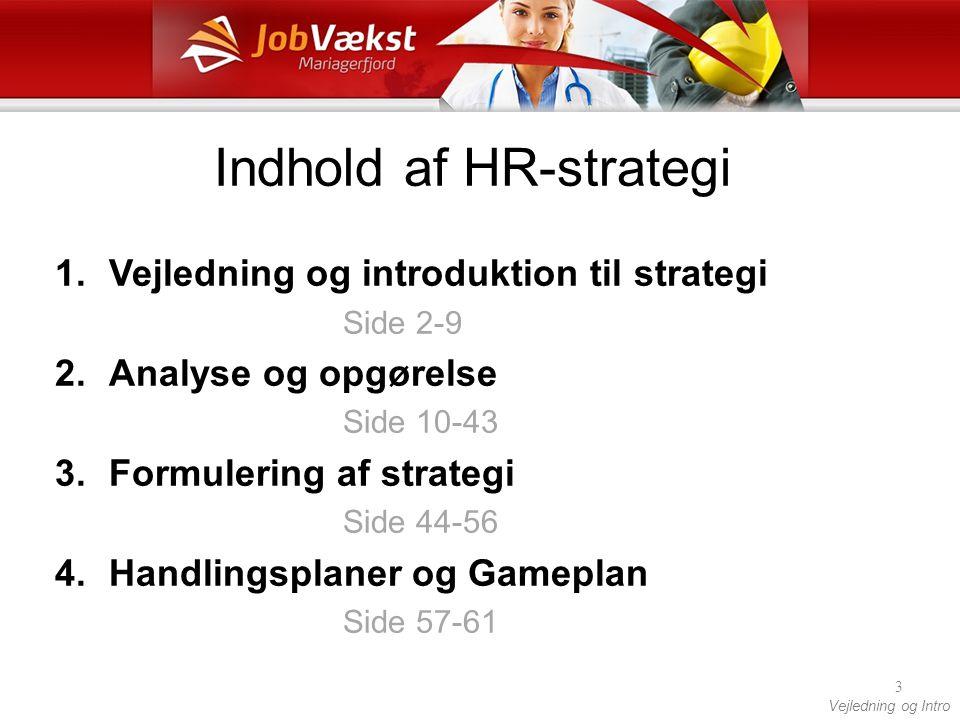 Indhold af HR-strategi