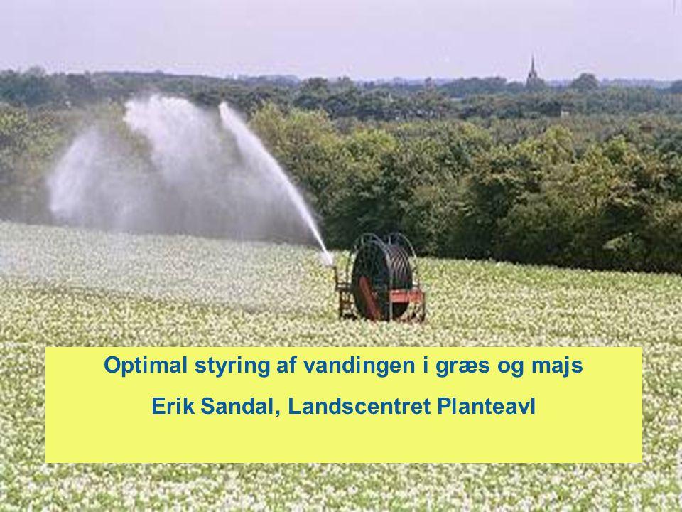 Optimal styring af vandingen i græs og majs