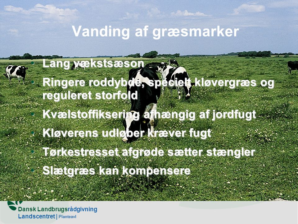 Vanding af græsmarker Lang vækstsæson