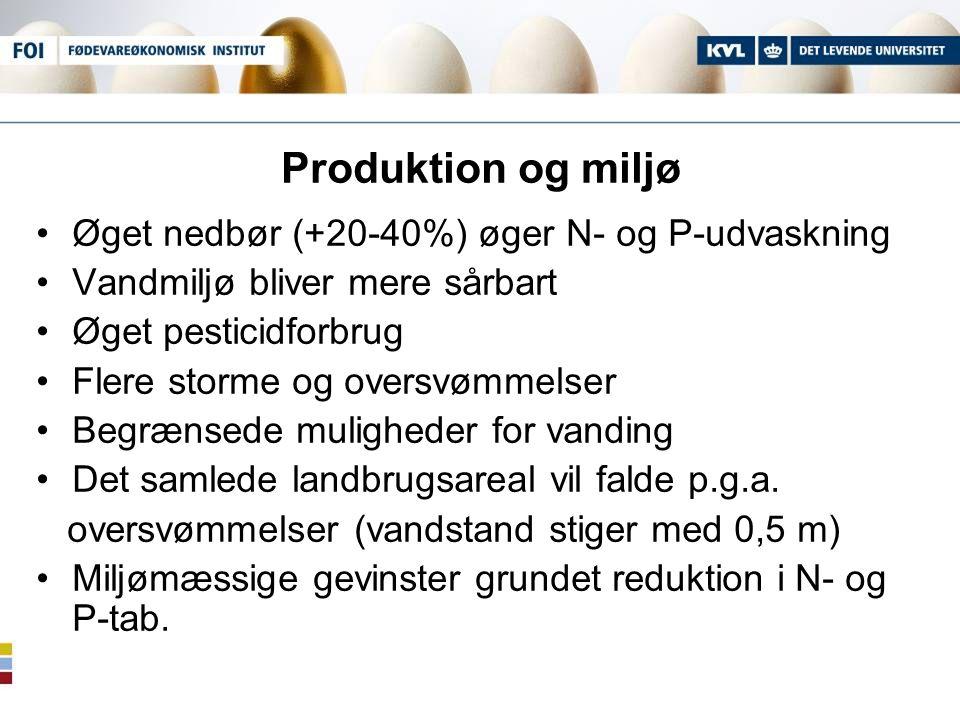 Produktion og miljø Øget nedbør (+20-40%) øger N- og P-udvaskning