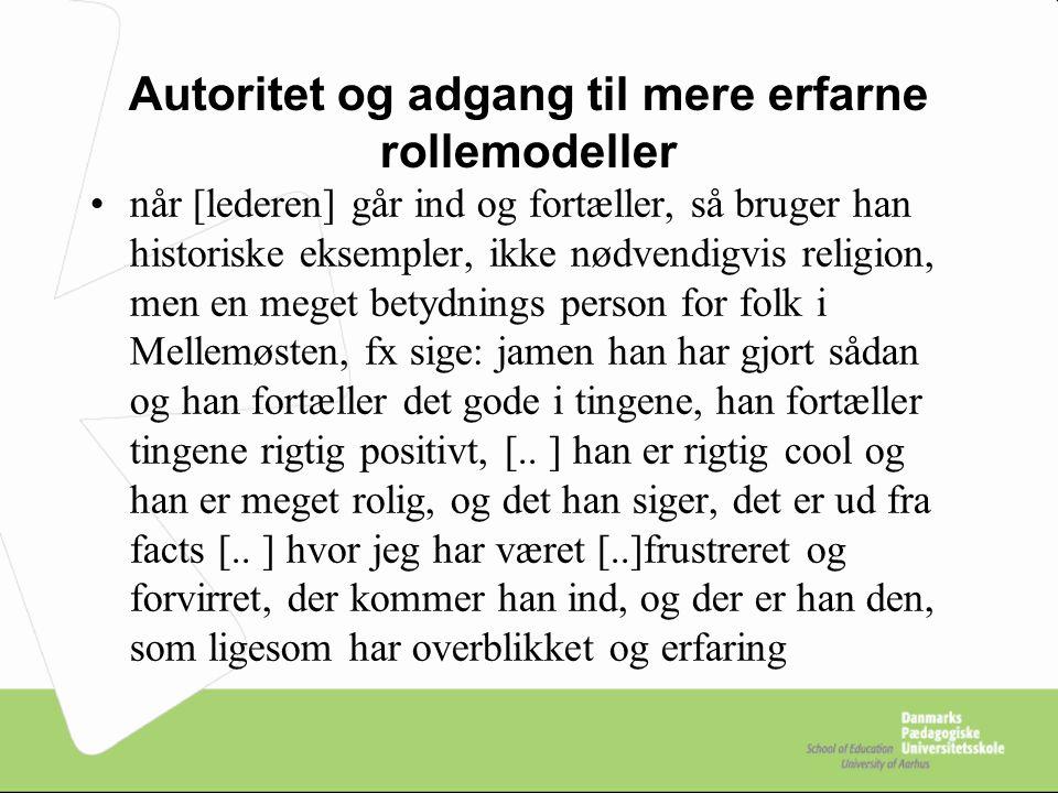 Autoritet og adgang til mere erfarne rollemodeller