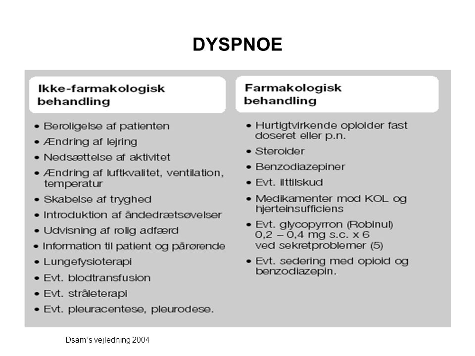 DYSPNOE Dsam's vejledning 2004